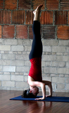 how to build strength for yoga inversions  popsugar fitness