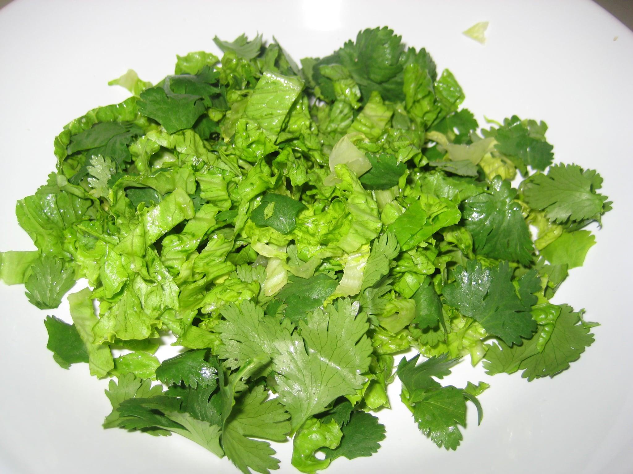 Tossed lettuce and cilantro.