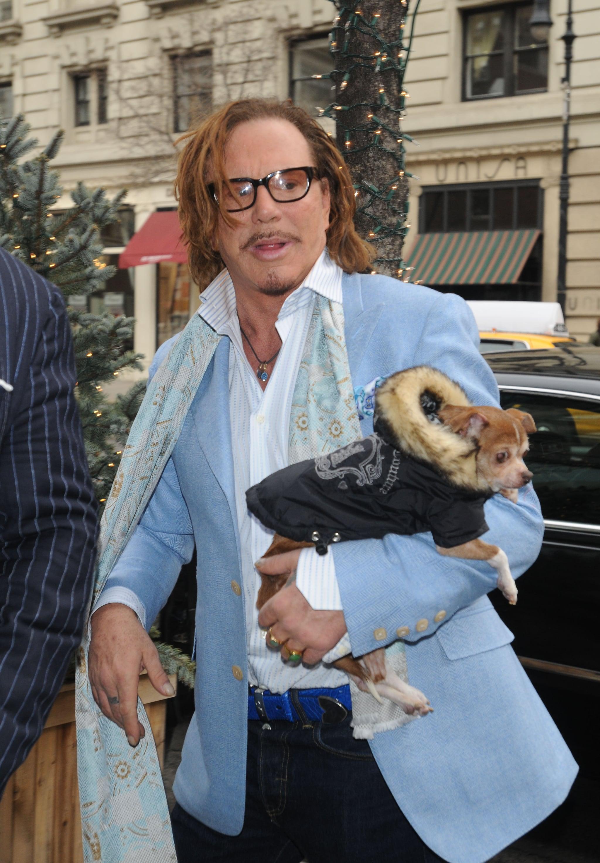 Mickey Rourke S Beloved Pet Chihuahua Loki Died Popsugar