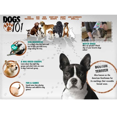 Tune In, Saturday! Animal Planet's Dogs 101
