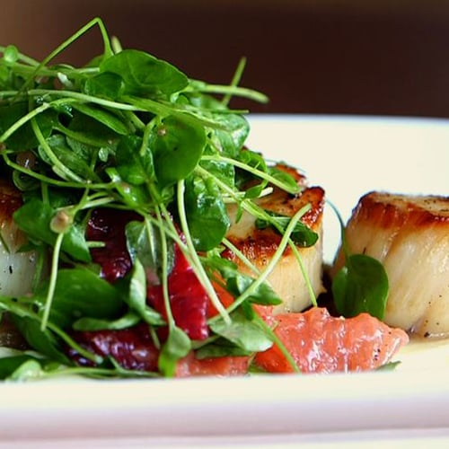Pan-Seared Scallops With Parsnip Purée